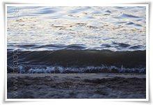 """Bild """"http://www.happymudi.de/allerlei/galerien/FOTOS-Abendstimmung-Rhein-2008/vorschau/IMG2008-02-09_139.jpg"""""""