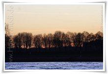 """Bild """"http://www.happymudi.de/allerlei/galerien/FOTOS-Abendstimmung-Rhein-2008/vorschau/IMG2008-02-09_142.jpg"""""""