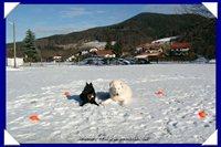 "Bild ""http://www.happymudi.de/allerlei/galerien/FOTOS-Moppel-Fotoecken-2007/vorschau/Fotoecken_B_49.jpg"""