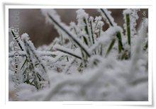 "Bild ""http://www.happymudi.de/allerlei/galerien/FOTOS-Ratingen-Schnee-2007/vorschau/Schnee_IMG2007-12-20_126.jpg"""