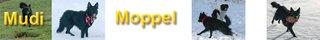 """Bild """"http://www.happymudi.de/images/Frame12_Banner2011_320x.jpg"""""""